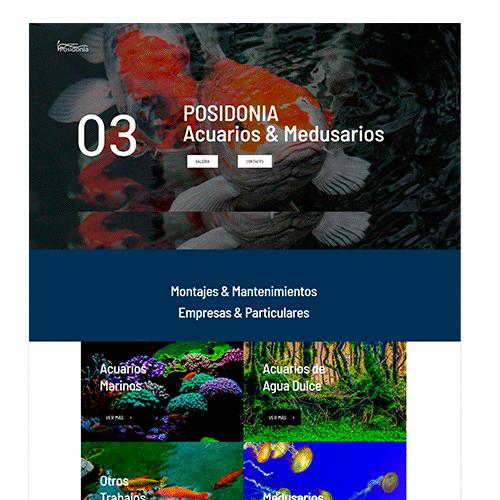 Posidonia3